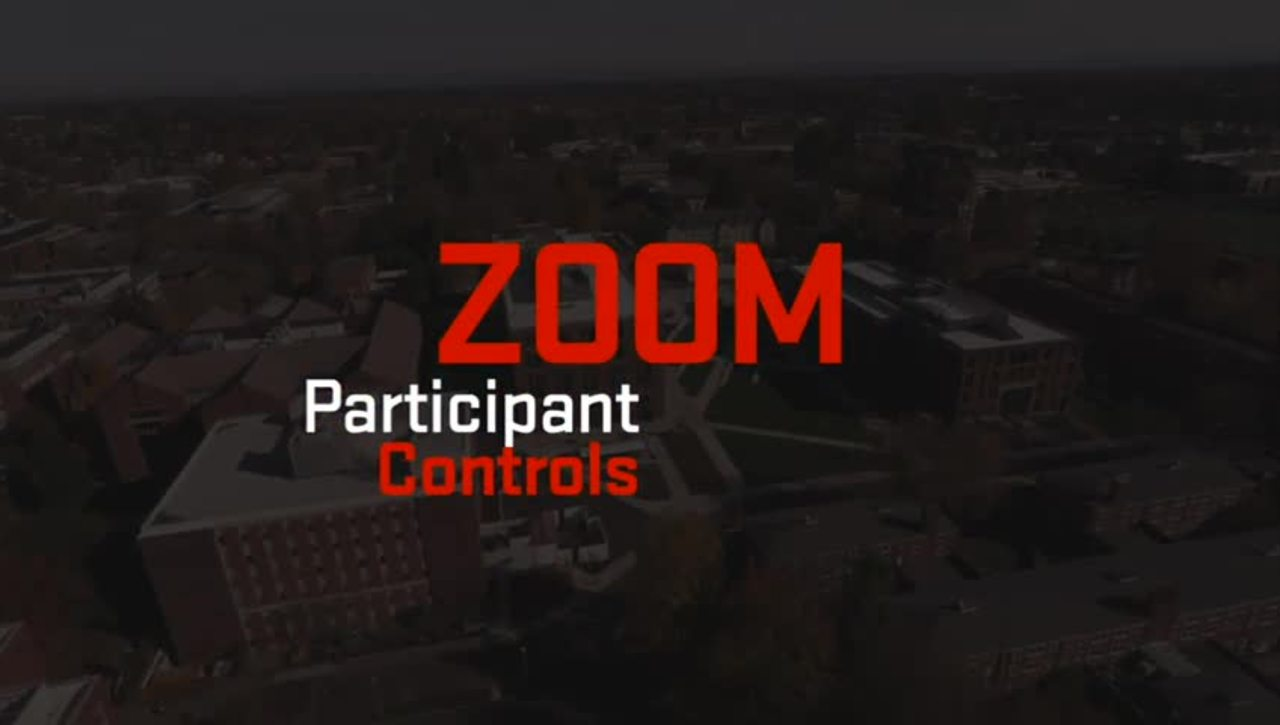 Zoom | Participant Controls