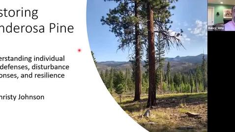 Thumbnail for entry Restoring Ponderosa Pine: Understand Individual Tree Defenses, Disturbance Responses, and Resilience