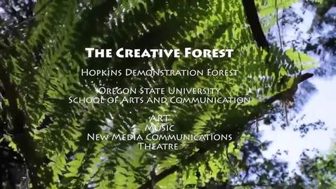 Thumbnail for entry The Creative Forest