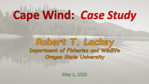 Thumbnail for entry Cape Wind Project - Policy Analysis
