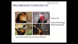 Thumbnail for entry BI 213 - Lecture 14
