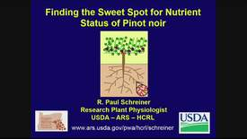 Finding the Sweet Spot for Nutrient Status of Pinot noir