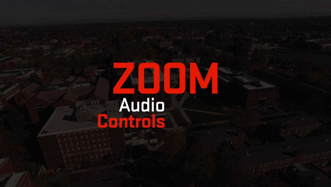Zoom | Audio Controls