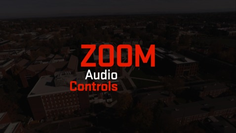 Thumbnail for entry Zoom | Audio Controls