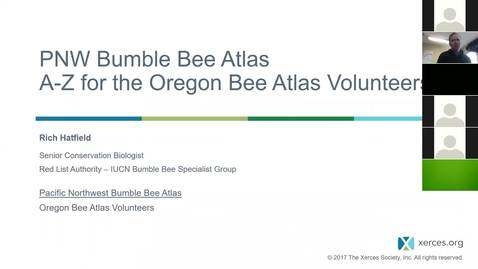 Thumbnail for entry How Oregon Bee Atlas Volunteers can Contribute to the PNW Bumble Bee Atlas