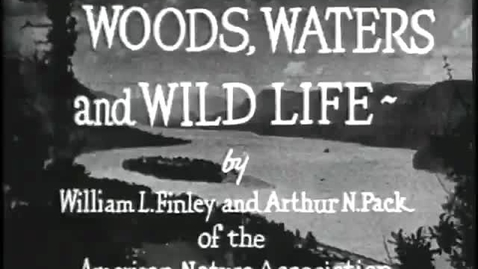 """Thumbnail for entry """"Woods, Waters, and Wildlife,"""" circa 1930"""