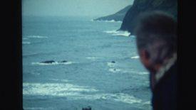 """""""Mammals of the Sea,"""" 1980"""