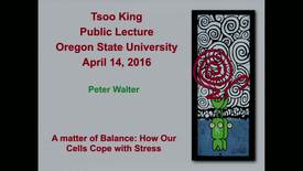 Thumbnail for entry 2015-2016 Tsoo King Public Lecture: Peter Walter