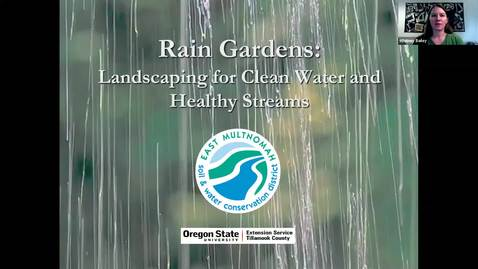 Thumbnail for entry Intro to Rain Gardens and Stormwater Management - Metro area OSU Extension Master Gardener - Garden Webinar Series, September 18, 2020