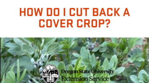Thumbnail for entry How do I cut back a cover crop?