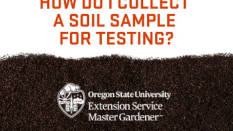 Thumbnail for entry How do I collect a soil sample for testing?