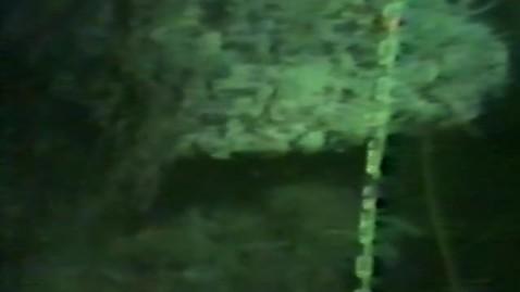 "Thumbnail for entry ""Exploration of the Juan de Fuca Ridge,"" August 1983"