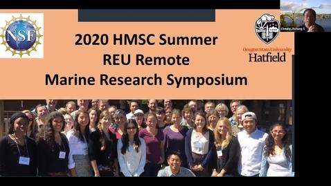 Thumbnail for entry 2020 REU Intern: Emily Poulin (Benthic Ecology Lab )