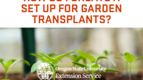 Thumbnail for entry How do I create a set up for garden transplants?
