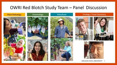 Thumbnail for entry Grape Red Blotch Disease Expert Panel Discussion Session
