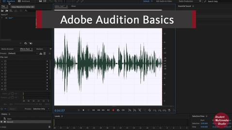 Thumbnail for entry Audition Basics