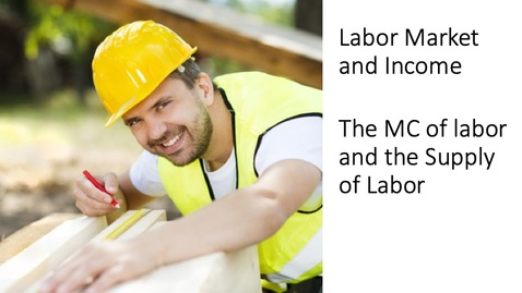 Thumbnail for entry Labor Market and Income - The Employment and Equilibrium Wage of a Monopsonist Employer