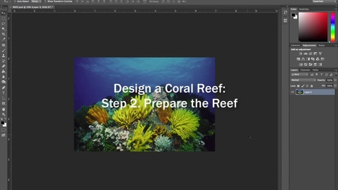 Thumbnail for entry Design a Coral Reef Project: Step 2. Prepare Your Coral Reef