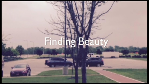 Thumbnail for entry Finding Beauty- Kathi Abba
