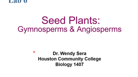 Thumbnail for entry Annotated Seed Plants (Angiosperm and Gymnosperms) Lecture