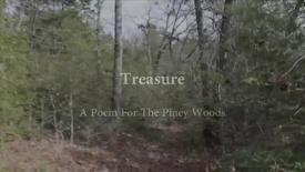 Thumbnail for entry Treasure: A Poem for The Piney Woods by Linda.Koffel