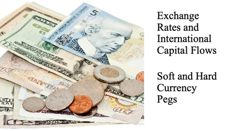 Thumbnail for entry Exchange Rates and International Capital Flows - Soft and Hard Currency Pegs