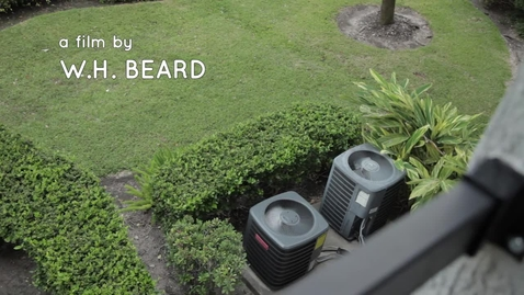 Thumbnail for entry Will Beard: Our Urban Soundtrack