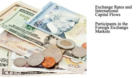 Thumbnail for entry Exchange Rates and International Capital Flows - Participants in the Foreign Exchange Markets