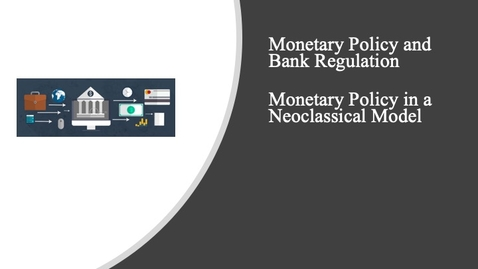 Thumbnail for entry Monetary Policy and Bank Regulation - Monetary Policy in a Neoclassical Model