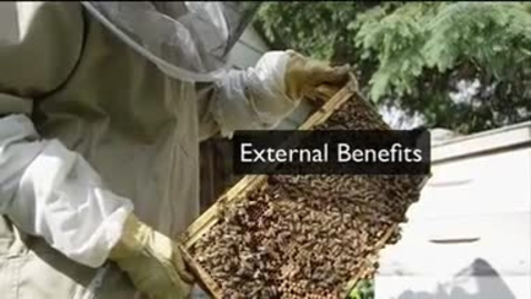 Thumbnail for entry External Benefits