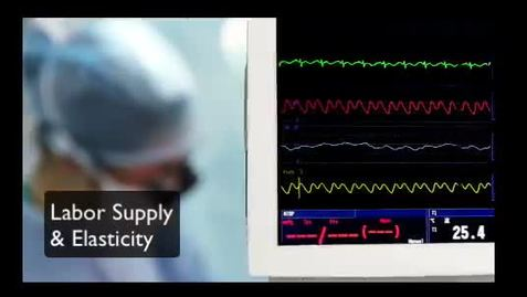 Thumbnail for entry Labor Supply Elasticity
