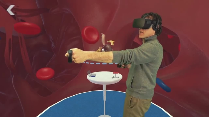 The Stanford Virtual Heart  Now Available in Virtual Reality Lab & Studio