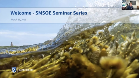 Thumbnail for entry SMSOE Seminar - March 16, 2021