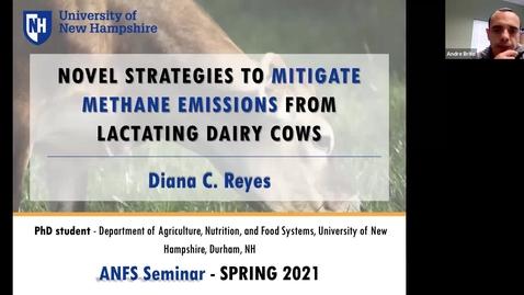 Thumbnail for entry ANFS Seminar: 29 Mar 2021