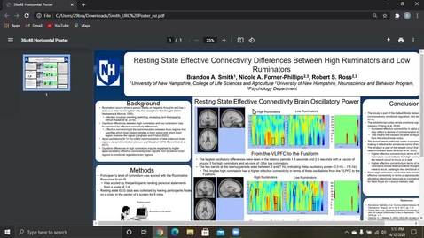 Thumbnail for entry Resting State Effective Connectivity Differences Between High Ruminators and Low Ruminators