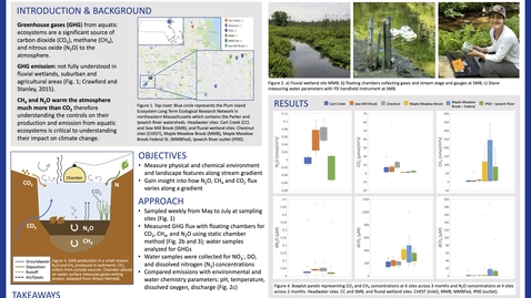 Thumbnail for entry Stream Greenhouse Gas Emissions Along a Wetland Gradient in the Ipswich River, Massachusetts