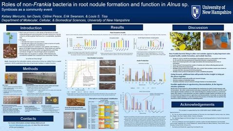 Thumbnail for entry Roles of non-Frankia bacteria in root nodule formation and function in Alnus sp.