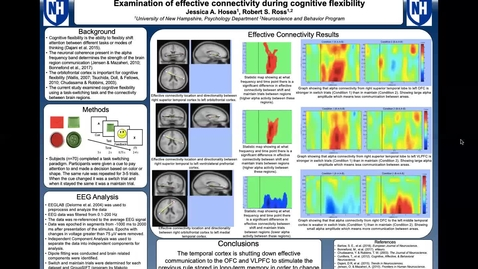 Thumbnail for entry Examination of effective connectivity during cognitive flexibility