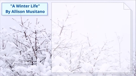 Thumbnail for entry A Winter Life URC- Musitano, Allison
