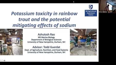 ANFS Seminar: Ashutosh Rao, 4 Nov 2019