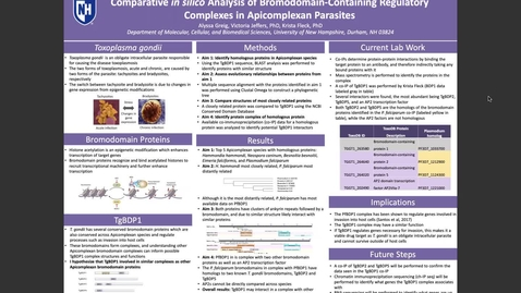 Thumbnail for entry Comparative in silico Analysis of Bromodomain-Containing Regulatory Complexes in Apicomplexan Parasites