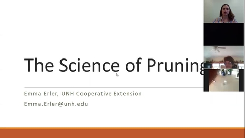 Thumbnail for entry The Science of Pruning
