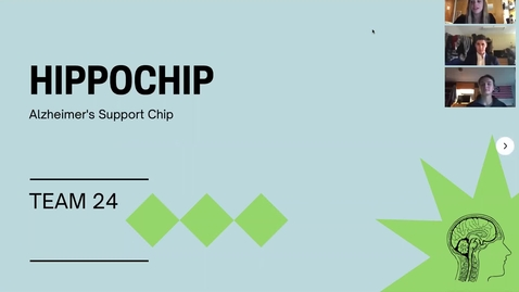 Thumbnail for entry 24 Karat (Team 24): Hippochip