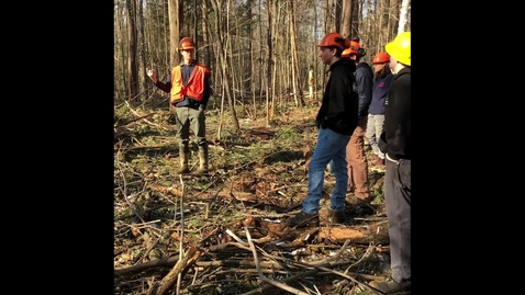 Thumbnail for entry A forester discusses how past land use affects today's forest