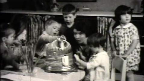 Thumbnail for entry Cornell Nursery School Footage