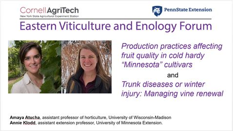 Thumbnail for entry Eastern Viticulture and Enology Forum - Production practices affecting fruit quality in cold hardy Minnesota cultivars. - Feb. 17, 2021.