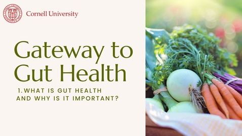 Thumbnail for entry Gateway to Gut Health #1: What is gut health and why is it important?
