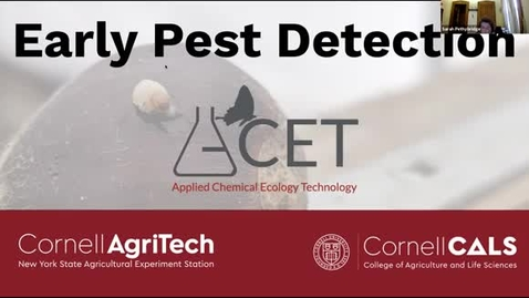 Thumbnail for entry CIDA Spring 2021 Seminar - Denis Willett: Early Pest Detection with the Applied Chemical Ecology Technology Program