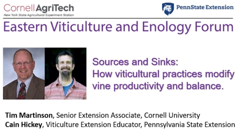 Thumbnail for entry Eastern Viticulture and Enology Forum: Sources and Sinks: How viticultural practices modify carbon assimilation and allocation.