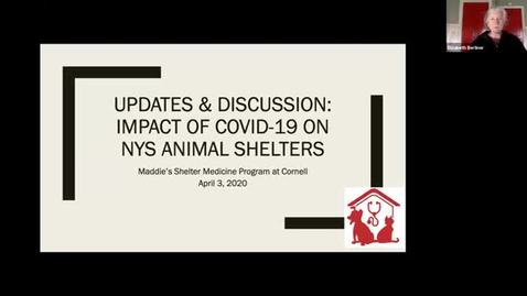 Thumbnail for entry Main clip-APRIL 3rd Updates & Discussion: The Impact of COVID-19 on NYS Animal Shelters with MSMP at Cornell